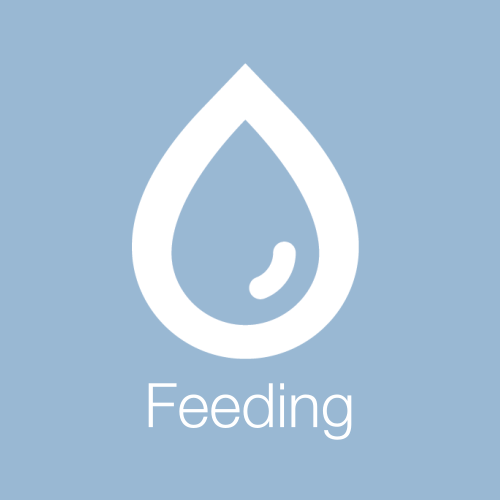 feeding nuvita
